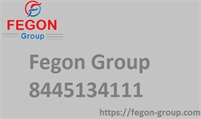Fegon Group